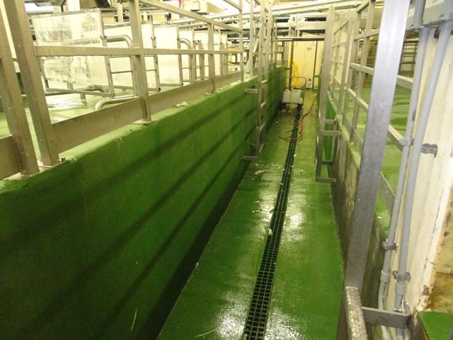 meat processing floor installation